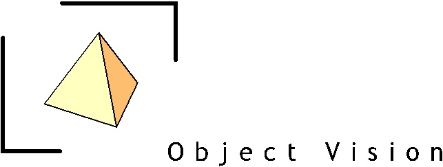 Object vision